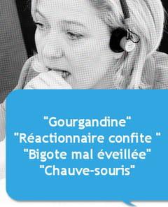 Insultes Marine Le Pen
