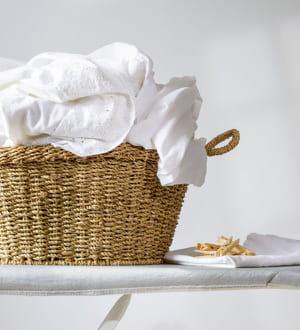 votre linge plus blanc que blanc les vertus du citron pour tout nettoyer dans la maison. Black Bedroom Furniture Sets. Home Design Ideas