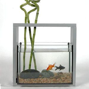 coup de coeur de la semaine un aquarium design. Black Bedroom Furniture Sets. Home Design Ideas