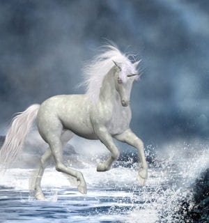 la légende de la licorne de mer.