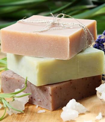 Remplacer l 39 insecticide anti puceron par du savon noir - Insecticide savon noir bicarbonate ...