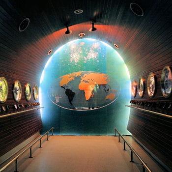 le museum aquarium de nancy les 15 plus beaux aquariums de linternaute