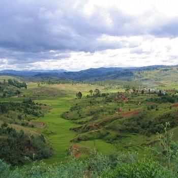 verte vallée malgache