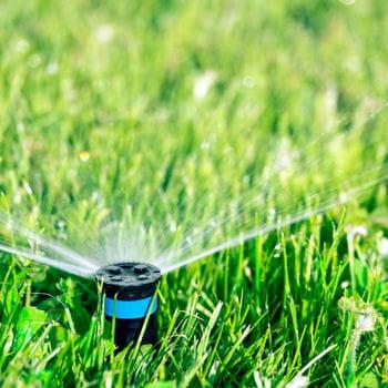 Lancer l 39 arrosage automatique du jardin la bonne heure la domotique e - Domotique arrosage automatique ...