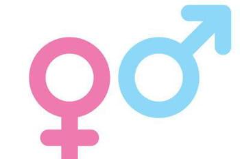 Le pape s'oppose à la théorie du genre dans les programmes scolaires français. 1956941-la-theorie-du-genre-qu-est-ce-que-c-est