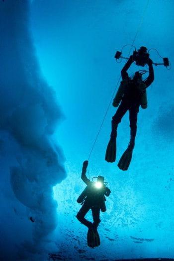 cent plongées sous la glace sont prévues au programme. du jamais vu !