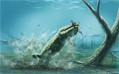 acanthostega était un animal aquatique. ses pattes étaient plutôt rigides et