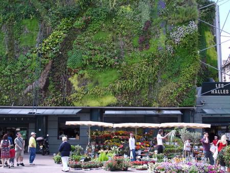 Mur Végétalisé du marché des Halles