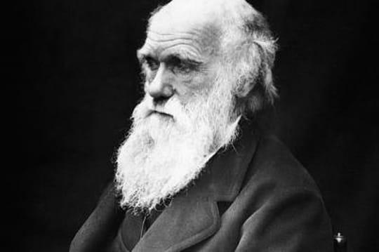 exemple de darwin awards