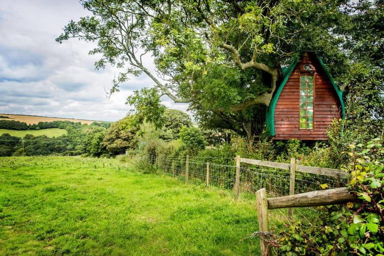 Une maison dans les arbres en cornouailles
