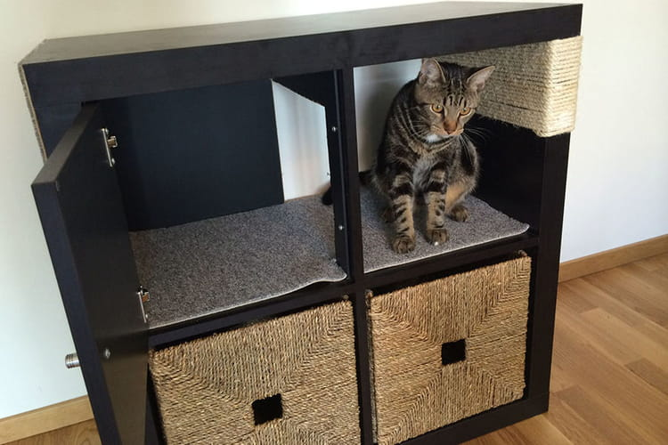 Une tag re chat - Meuble litiere chat ikea ...