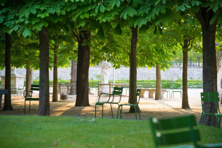 Le jardin des tuileries for Au jardin des tuileries
