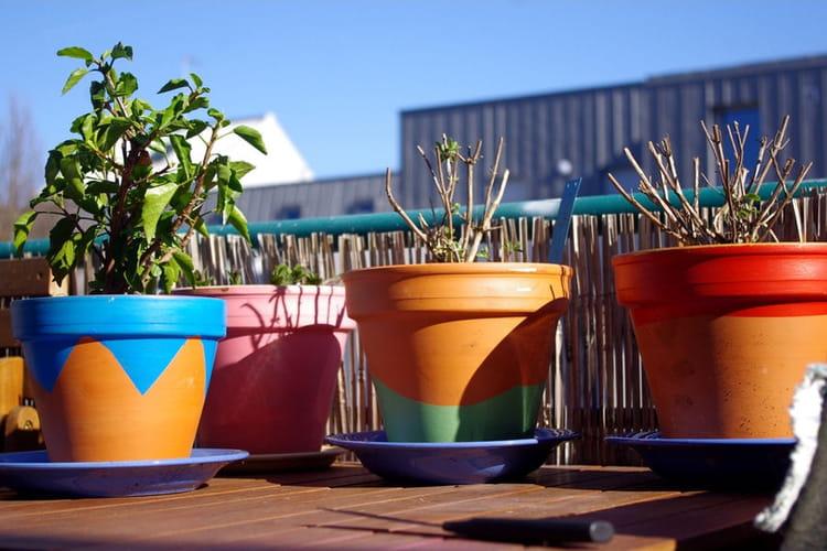 peindre vos pots en terre cuite des astuces d co pour la terrasse ou le jardin linternaute. Black Bedroom Furniture Sets. Home Design Ideas