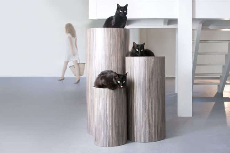 un arbre chat design des objets d co pour vos animaux linternaute. Black Bedroom Furniture Sets. Home Design Ideas