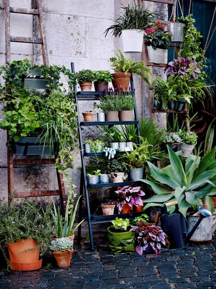 des plantes vertes pour mon balcon ForPlantes Vertes Exterieur Balcon