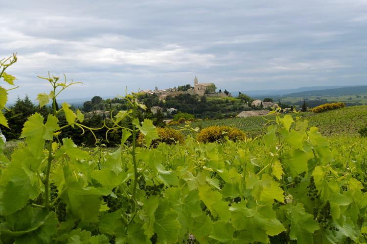 Cairanne, village vigneron