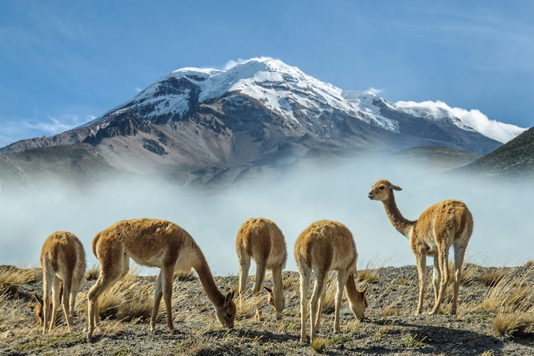 Chimborazo, le point le plus éloigné du centre de la Terre