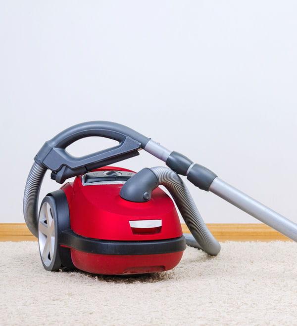 l 39 aspirateur moucherons vos astuces pour se d barrasser des nuisibles linternaute. Black Bedroom Furniture Sets. Home Design Ideas