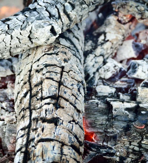 Utiliser de la cendre de bois for Cendre de bois au jardin