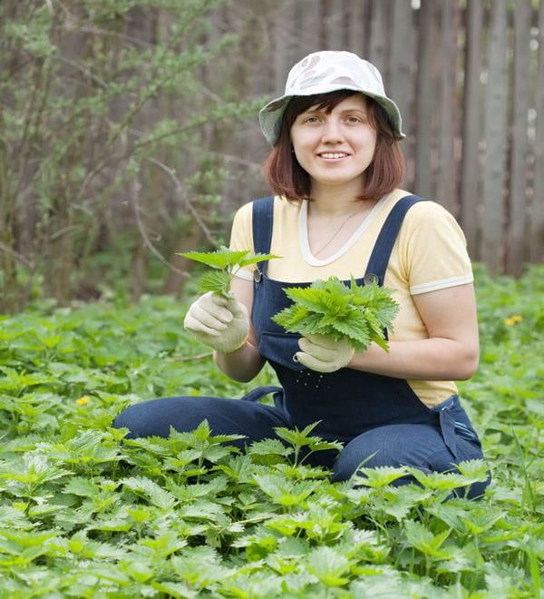 R aliser votre propre engrais jardinage bio des for Realiser son jardin