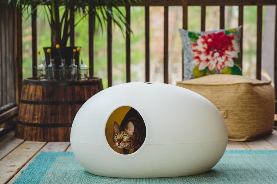Des objets d co pour vos animaux linternaute for Objet deco animaux