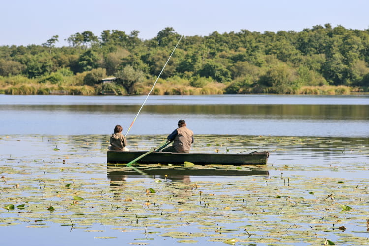 Drom luhlan oude le champ de blé linjecteur pour la chasse et la pêche