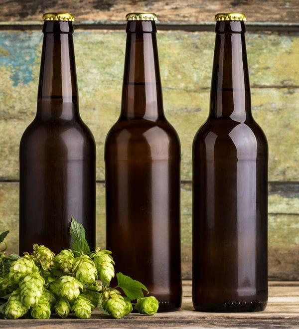La bi re pour faire briller ou nettoyer 20 produits d - Pieges a limaces fait maison a base de biere ...