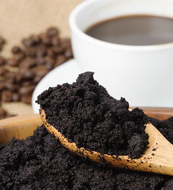 Le marc de caf pour d sodoriser 20 produits d - Utilisation du marc de cafe au jardin ...
