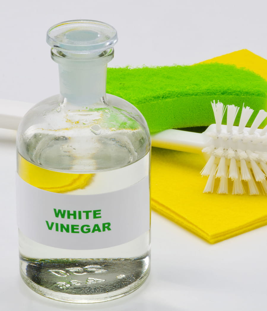 Liminer les mauvaises odeurs avec du vinaigre blanc 20 - Dosage vinaigre blanc contre pucerons ...