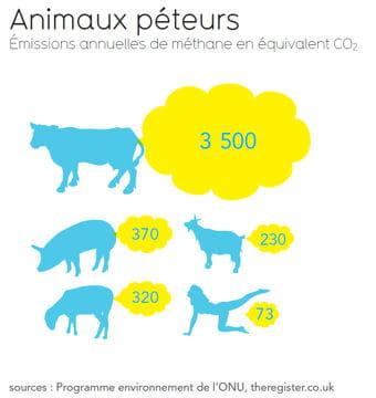les émissions de méthane