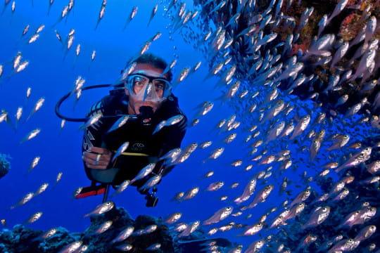plongeur aquatique