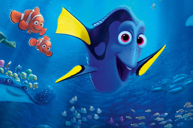 Video le monde de dory marin franck dubosc paniqu - Nemo et doris ...