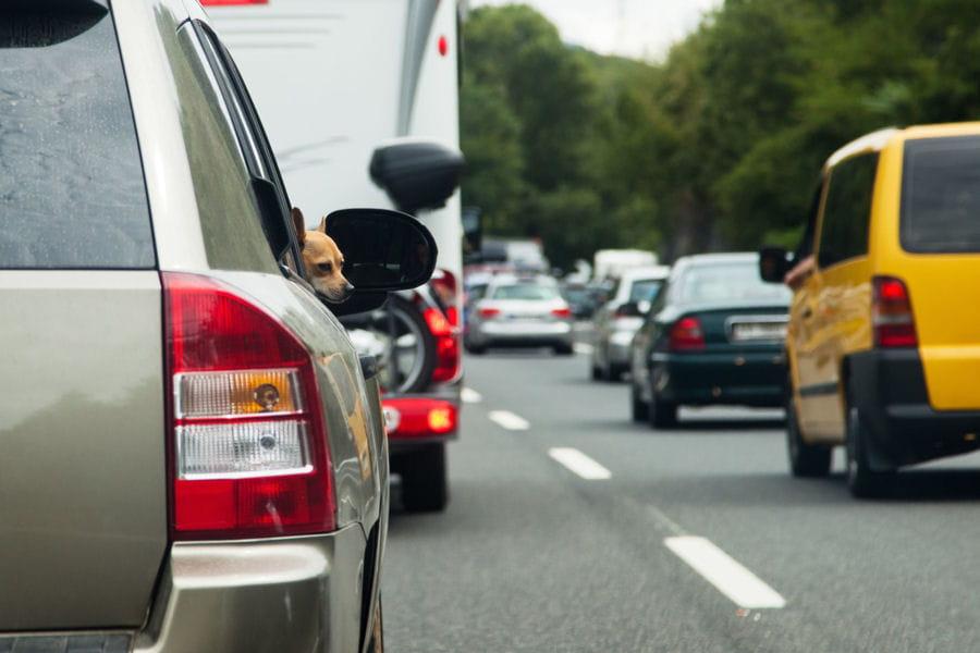 bison fut samedi rouge en vue sur les routes les pr visions trafic pour les 27 et 28 ao t. Black Bedroom Furniture Sets. Home Design Ideas
