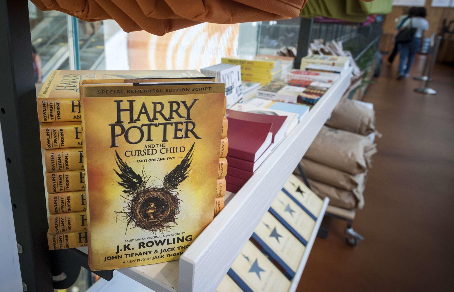 Harry potter 8 la date de sortie de la suite harry - Harry potter 8 et les portes du temps bande annonce ...