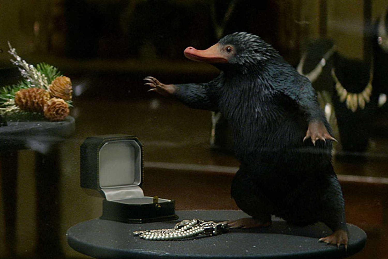 10412803-les-animaux-fantastiques-sera-une-serie-de-5-films Animal dans La Boîte à images