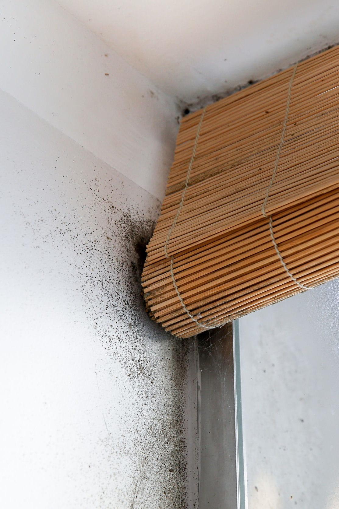 Injecter de la r sine dans les murs for Probleme d humidite mur interieur