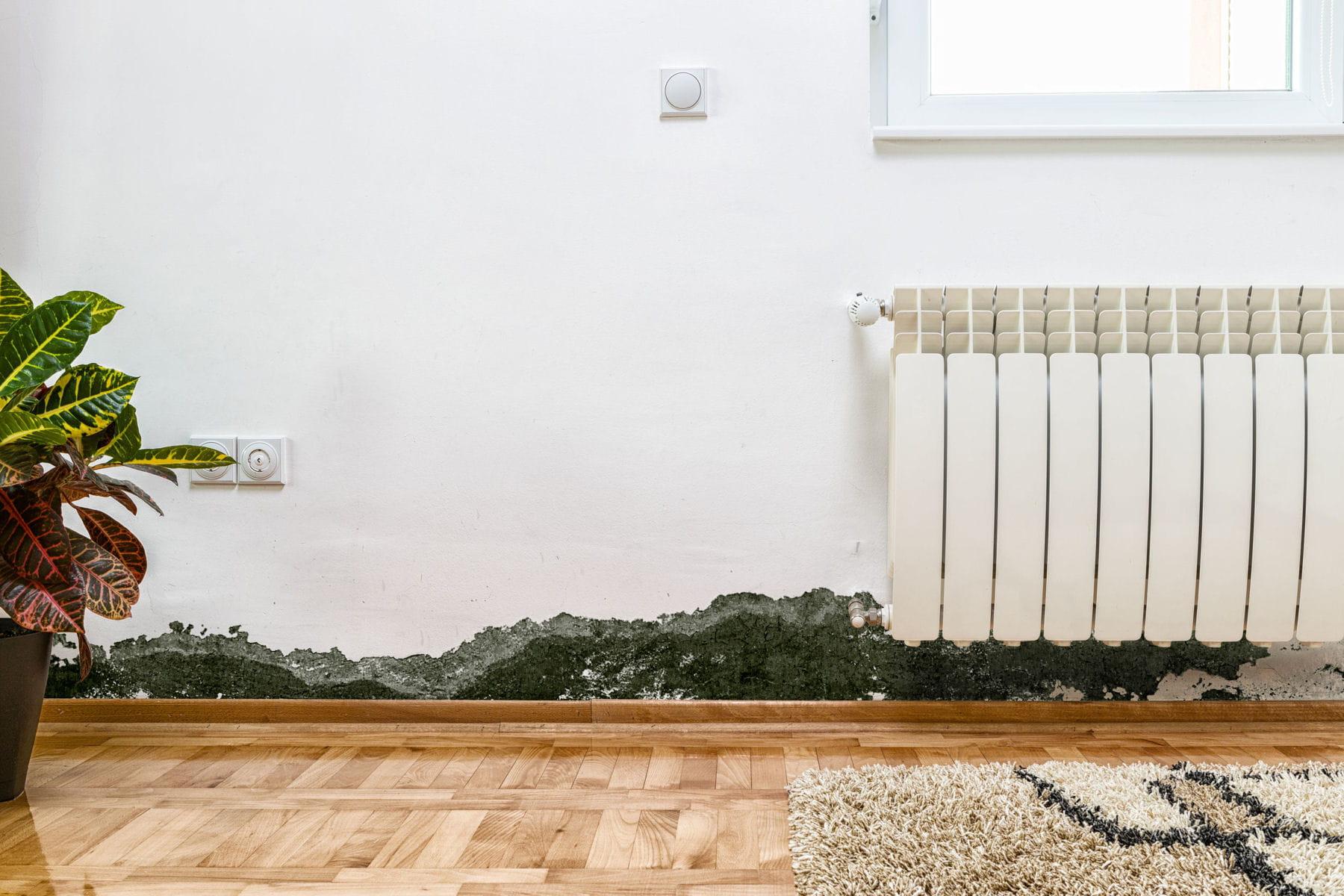 Comment traiter les probl mes d 39 humidit linternaute - Probleme d humidite appartement ...