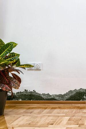 enlever les taches d 39 humidit comment traiter les probl mes d 39 humidit linternaute. Black Bedroom Furniture Sets. Home Design Ideas