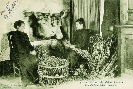 france rurale 1900
