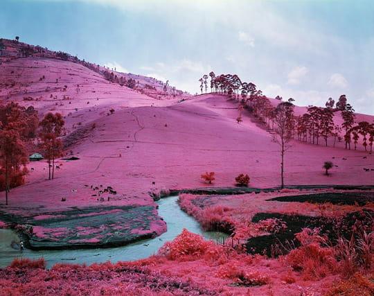 de beaux paysages   la  u0026quot vie en rose u0026quot  au congo