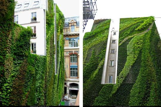 rue d'alsace à paris