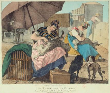Histoire :  Le Paris du XIXe siècle Tondeuses-chiens-1128469
