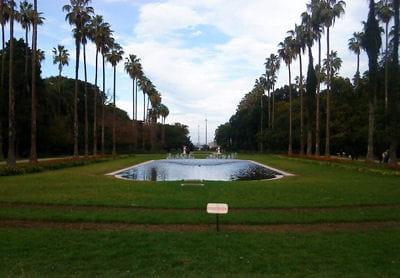 Sexe et moeurs en afrique les diff rentes mani res d for Jardin olof palme alger
