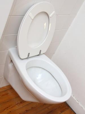 baisser le battant de la cuvette des toilettes 10 choses qu 39 un homme doit savoir faire. Black Bedroom Furniture Sets. Home Design Ideas