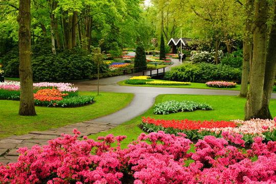Dans le parc floral de keukenhof au pays bas balade dans les plus beaux jardins du monde - Les plus beaux jardins de france ...