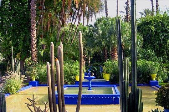 les jardins de majorelle au maroc balade dans les plus beaux jardins du monde linternaute. Black Bedroom Furniture Sets. Home Design Ideas