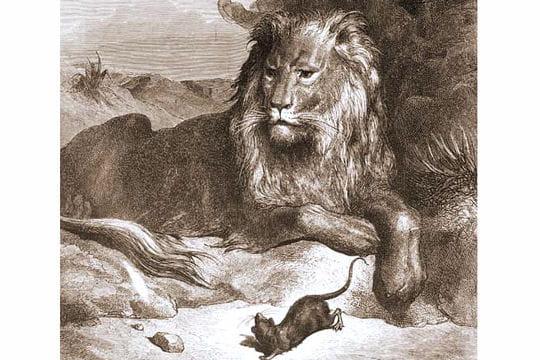 Le lion et le rat gustave dor illustre la litt rature - Image le lion et le rat ...