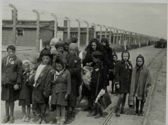 En chemin vers la chambre gaz les enfants dans la for Auschwitz chambre a gaz