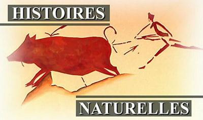 histoires naturelles, le documentaire du bout de la nuit sur tf1