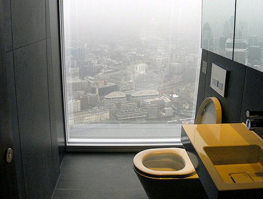 vue... des toilettes